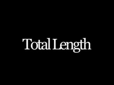 paste Total Length