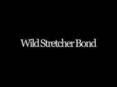 Wild Stretcher Bond